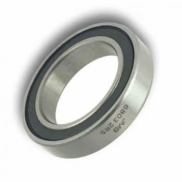 Hybrid Ceramic Stainless Steel Ball Bearing (6803 6804 6806 61803 61804 61806 2RS)