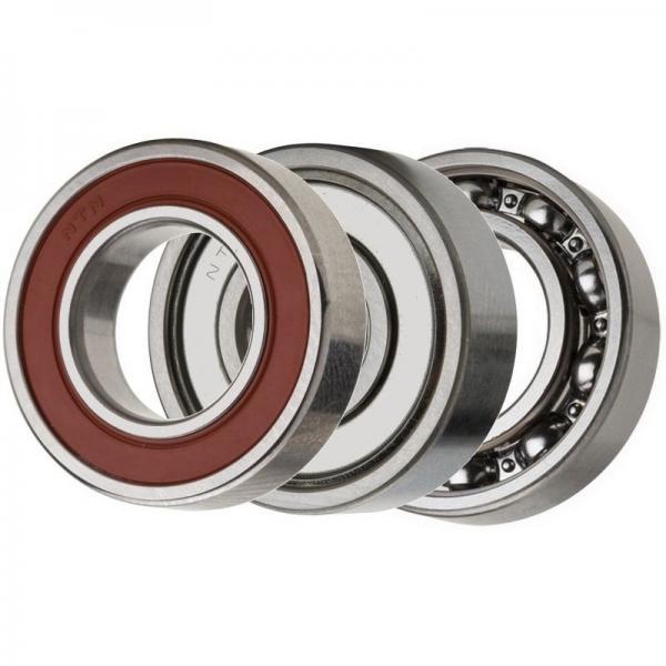 SKF Koyo NTN NSK Snr Timken Hybrid Ceramic Stainless Steel Ball Bearing 6803 6804 6806 61803 61804 61806 2RS #1 image