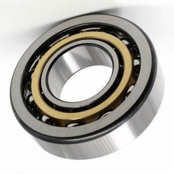 Bicycle Parts Bearing 6301-2RS (Ball Bearings Motorcycle Parts Ball Bearings Auto Parts Ball Bearing 6302 6304 6308 63010 6312 6314 604 605 606 607 608 609 625) #1 image