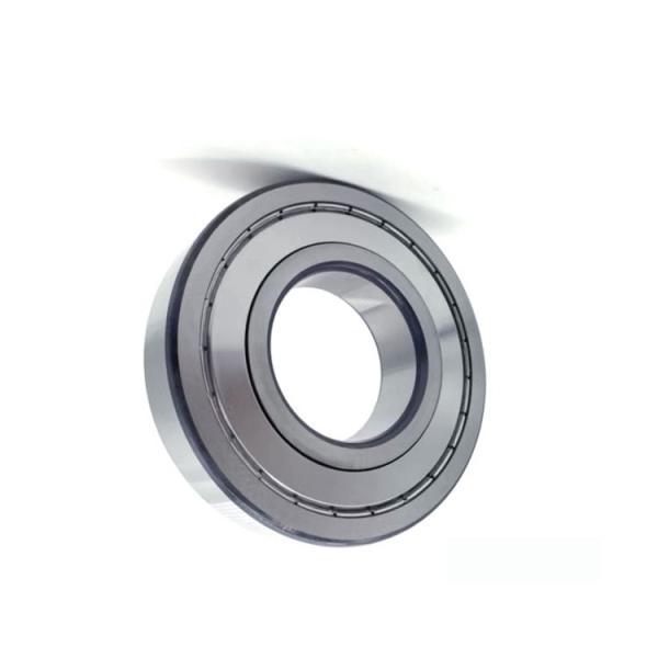 Japan brand NSK 6004du2 6082 6005du2 series deep groove ball bearing #1 image