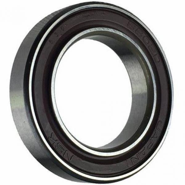 Black Deep Groove Ball Bearing NSK 6306 6228 6210 6001 6802 RS 696zz Chrome Steel Bearing 698 F603zz #1 image
